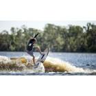 Wake Surf Ronix Koal Classic Fish